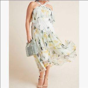Anthropologie Plus Garden Party Maxi Dress